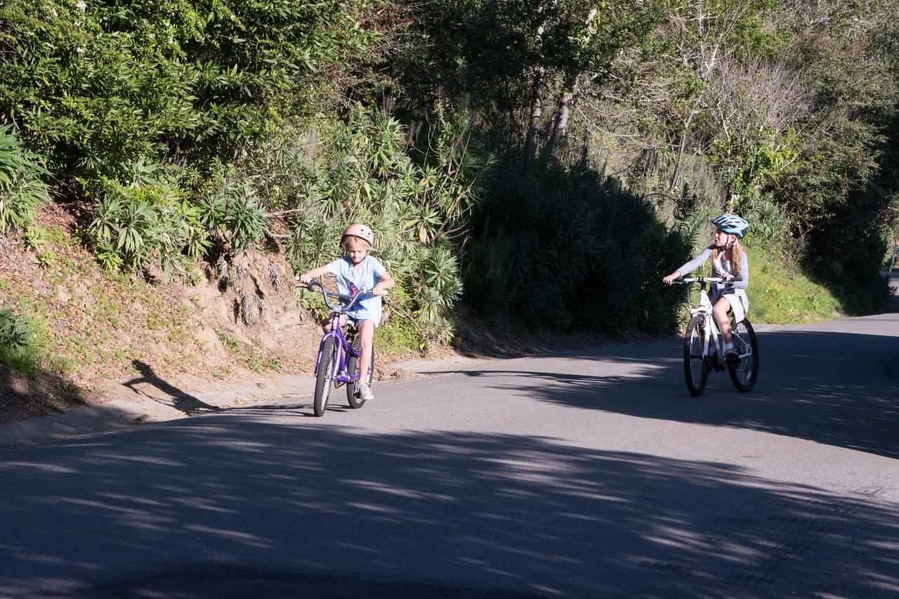 Riding bikes on Montford Ave.
