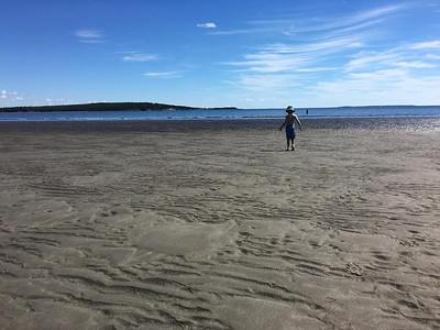 Sand Dollar Beach, NS