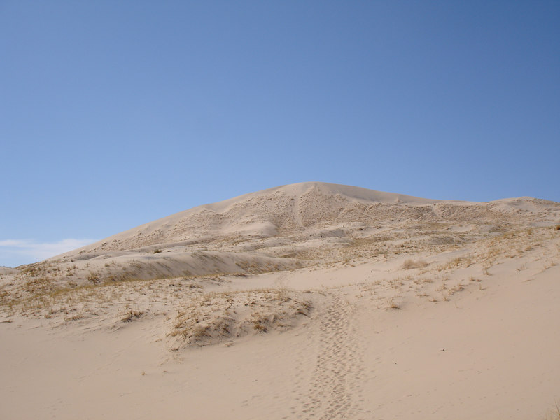 Looking back at the 700 ft summit of Kelso Dunes.