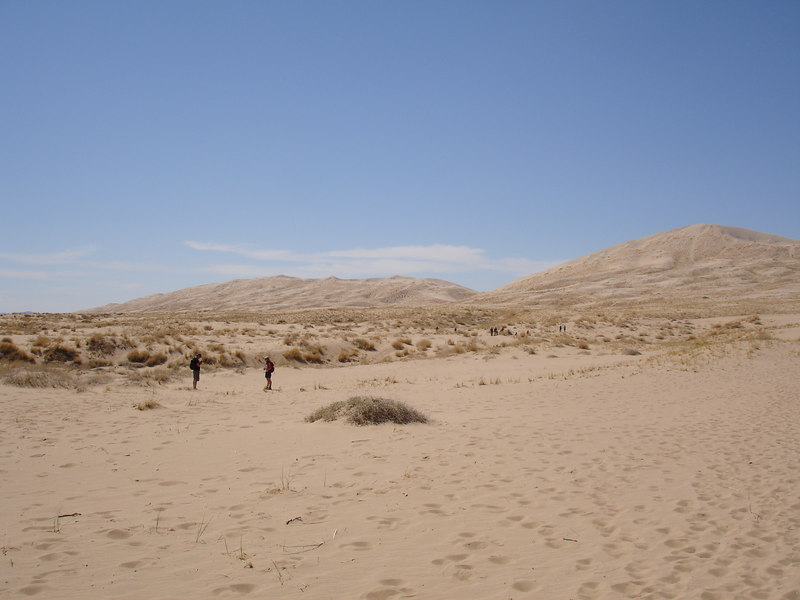 The Kelso Dunes rise 700 feet above sea level.