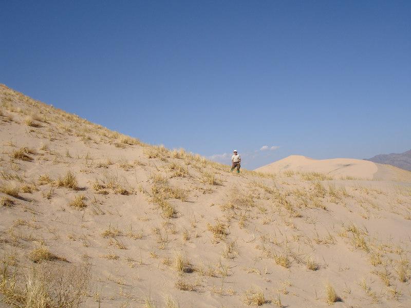 Our leader, Rick McHard, on Kelso Dunes.