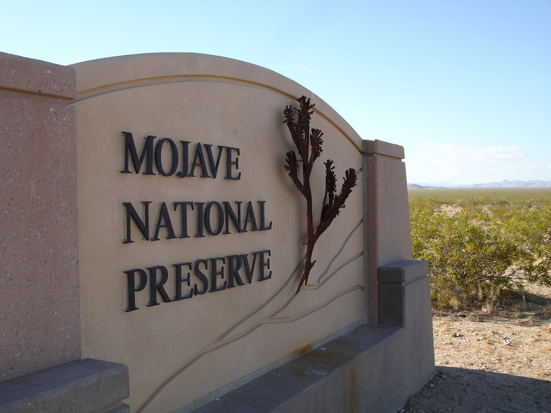 We took Essex Road off Interstate 40 to Mojave National Preserve.