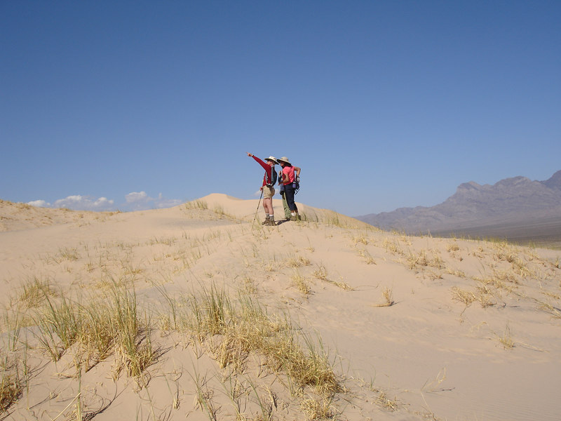 Two memebers of our group scoping the views on Kelso Dunes.