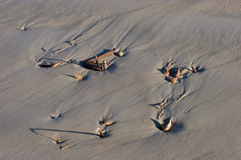 Beach, Galveston Island State Park, February 2008