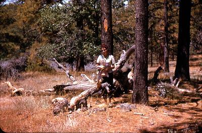 Priscilla Jones, Laguna Mountains, near San Diego, California  circa 1965