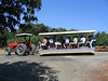 tram tour at Benziger Family Winery