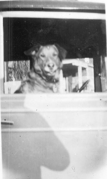Don in Nash - Jan 1931