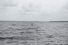 9-1-08 Lake Harney 052