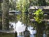 Hurricane FAY 8-27-08 032