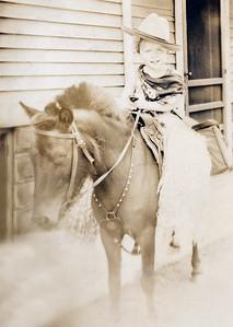 """Zoe Ellen on Pony 1372 W 64 St."""
