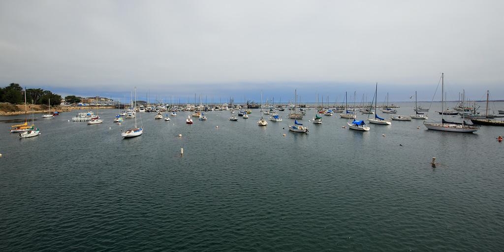 IMAGE: http://www.tkphoto.me/Family/Monterey-2014/i-Q6f23Jp/0/XL/Monterey-20140712-070-XL.jpg