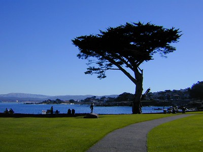 Park area - Monterey Bay