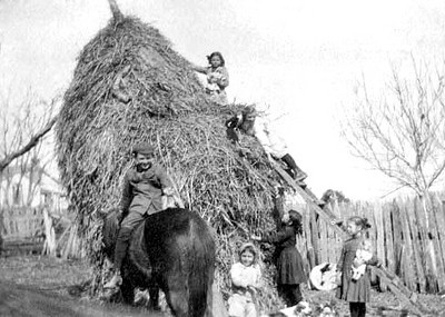REID CHILDREN ON A HAYSTACK - 1908 It looks like great fun, but I think the haystack is in peril. Apparently, there is a new equistrian in the bunch, as he hasn't quite figured out how to sit his horse.