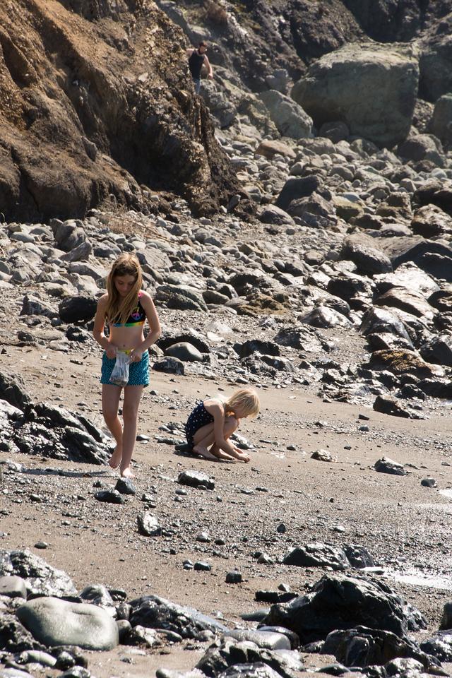 Gathering shells