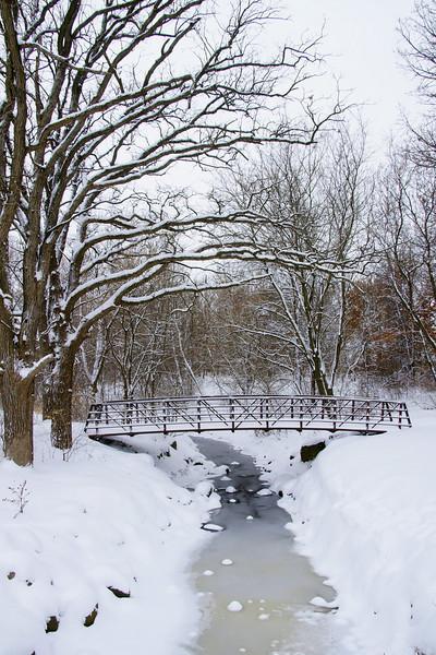 Horses, Bridge in snow (a700) - December 2007 018.JPG