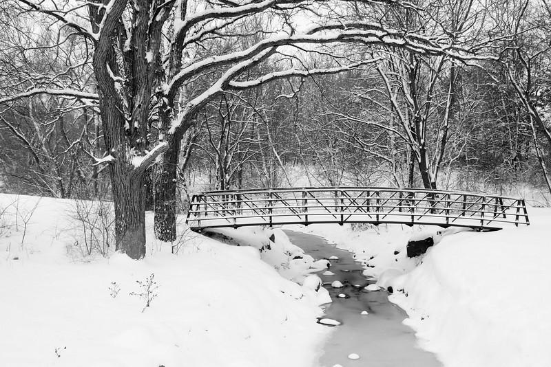 Horses, Bridge in snow (a700) - December 2007 017.JPG