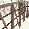 Horses, Bridge in snow (a700) - December 2007 020.JPG