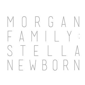 Morgan Family: Stella Newborn