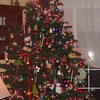 Buehner's beautiful old fashioned christmas Tree