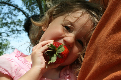 That strawberry is as big as Carly.