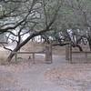Rest Stop near Mc Allen