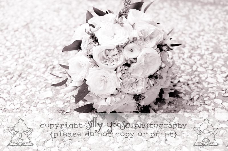 SGP B&W Copy-9209