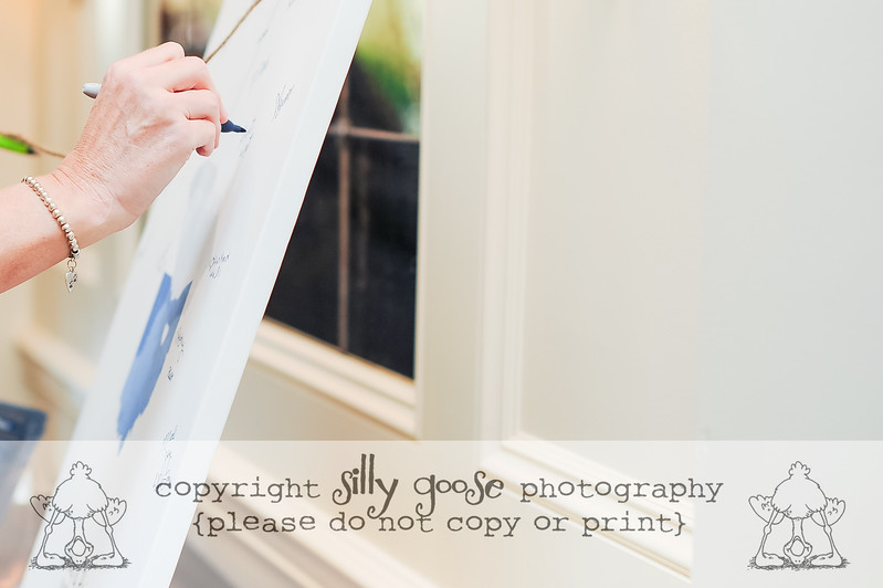 SGP Color Copy-9230
