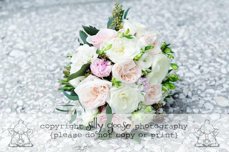 SGP Color Copy-9211