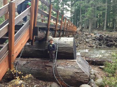 big logs; little kid
