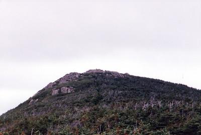 Mt Hale