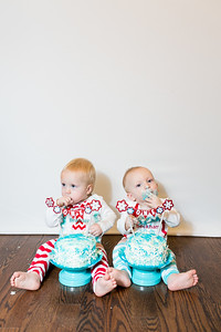 2015Dec9-MurffBabies-OneYear-Twins-024