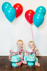 2015Dec9-MurffBabies-OneYear-Twins-043