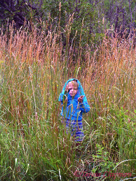 Eric Chipman - exploring at the Cabin - Thompson Falls, MT