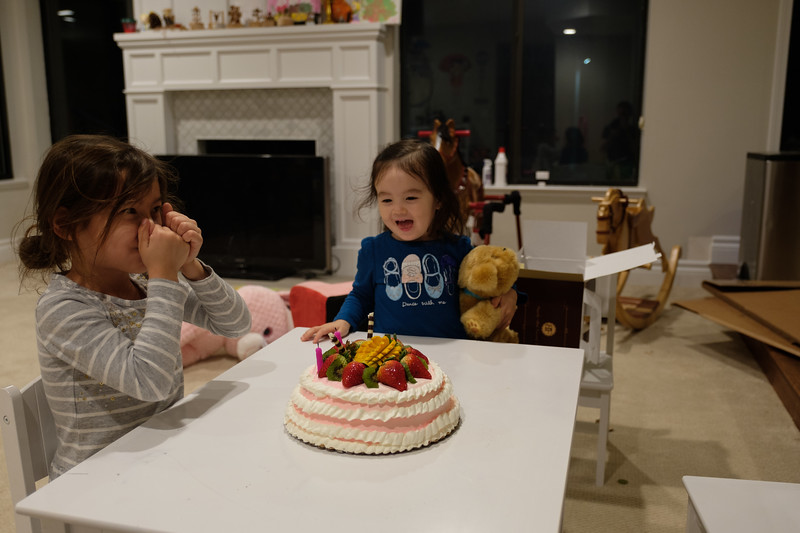 Eleanor's 2nd Birthday