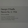 Georgia O'Keeffe Petunia No. 2, 1924