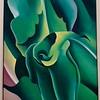 Georgia O'Keeffe - Corn, No. 2, 1924