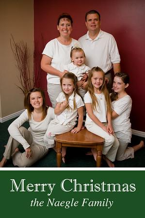 Naegle Family 2008