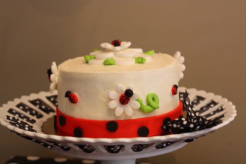 2011-03-06_Nataile_1st_Birthday3