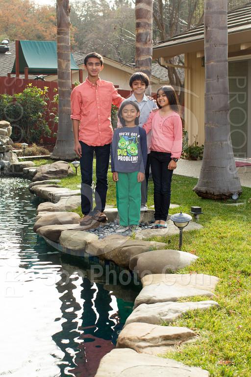 2013-12-31-natarajan-family-1308