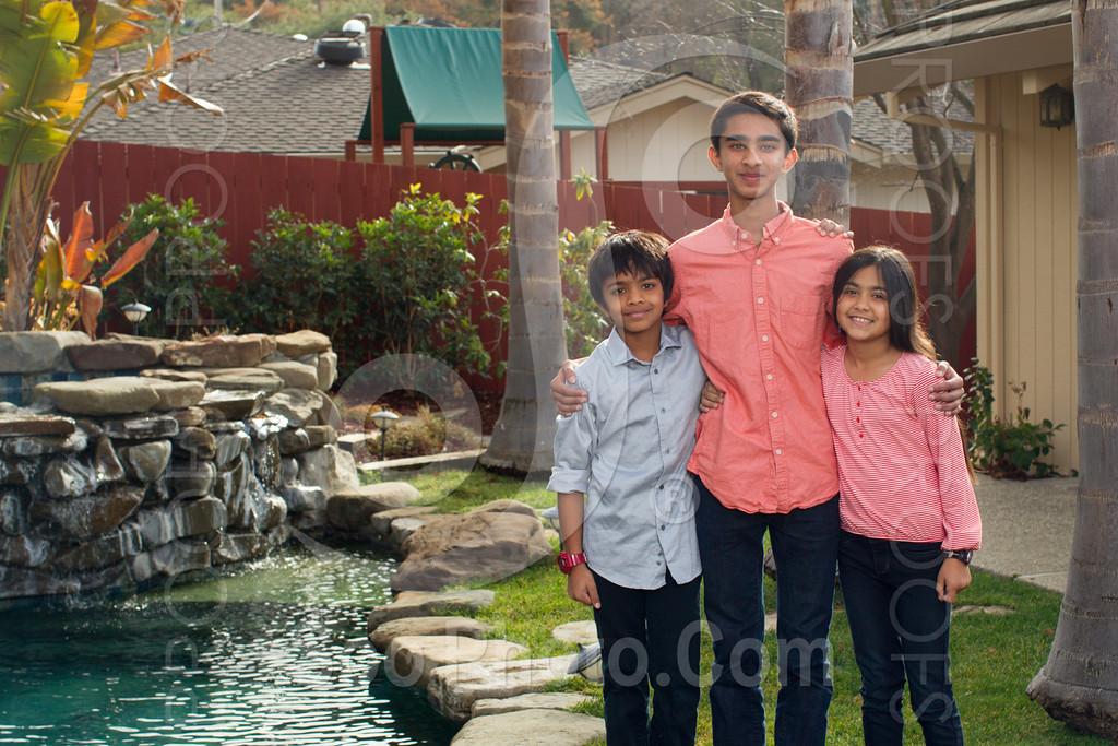 2013-12-31-natarajan-family-1312