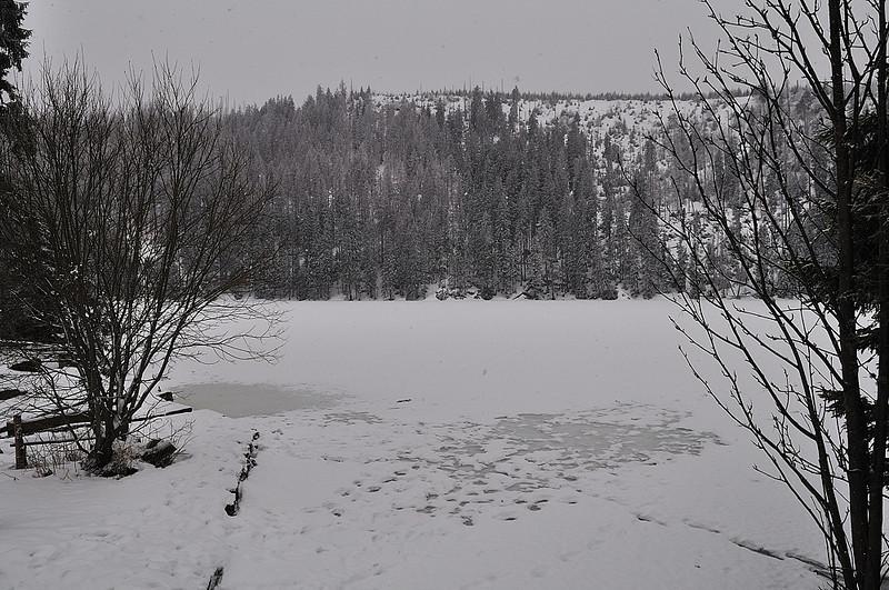 Prášilské jezero v únoru