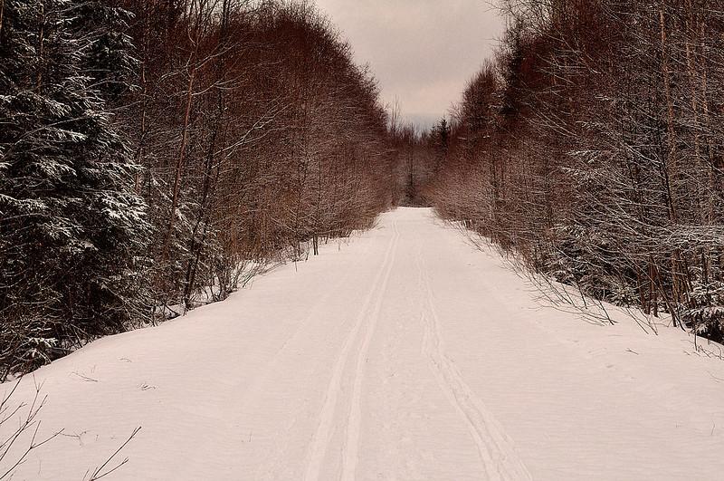 cestou zpět do Prášil