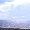A rough panorama along Lake Ponchartrain while driving along at 50+ mph. Thus the jagged edges. :P