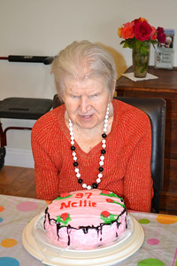 Nellie at 97_2161