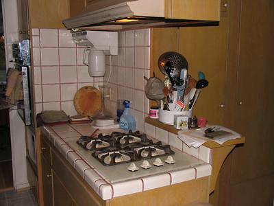 old cooktop area.JPG