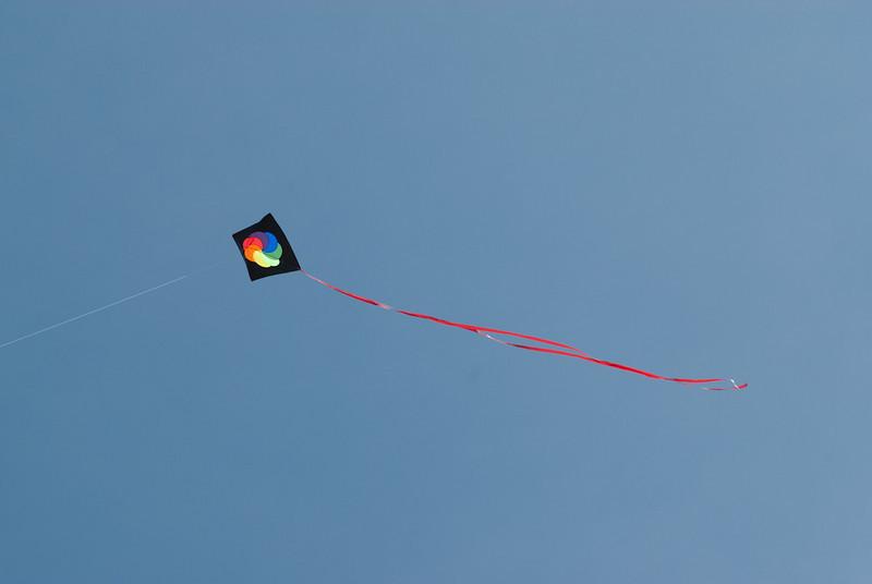 Kite-110