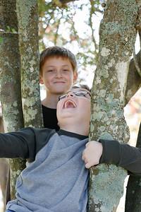 whitman bennett-barrett tree 1