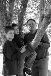 whitman 3 boys tree 2