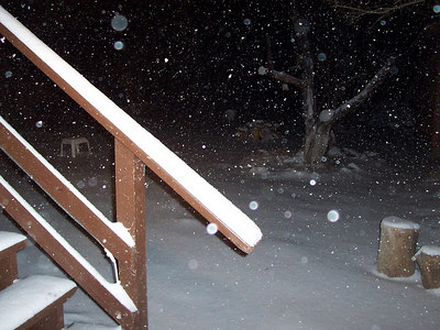 Snow in the side yard was 5 inches deep by 8 PM.