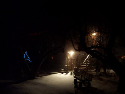 By Wed. evening the snow started really coming down again. Christmas lights look eerie in the snowy night.